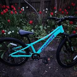 WINNER BETTY  Наймилішій дівочій велосипед JUNIOR серіі WINNER. Побудований на алюмінієвій рамі та простій невибагливій трансміссіі 1х7шв. Перемикач швидкостей та гальмівні ручки під дитячі долоні, механічні дискові гальма, амортизаційна вилка із м'якою пружиною розрахованною на середню вагу райдерки 20кг, в поєднанні з витонченим дизайном роблять цей велосипед надійним та найзручнішим двоколісним комрадом в локальних подорожах чи в сімейних покатеньках. Доступні для продажу з 7го Травня 2021